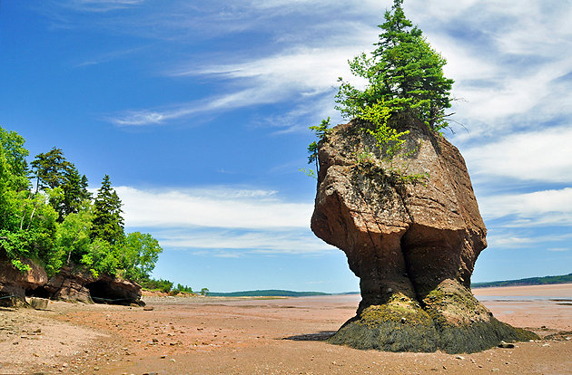 canada-bay-of-fundy-hopewell-rocks